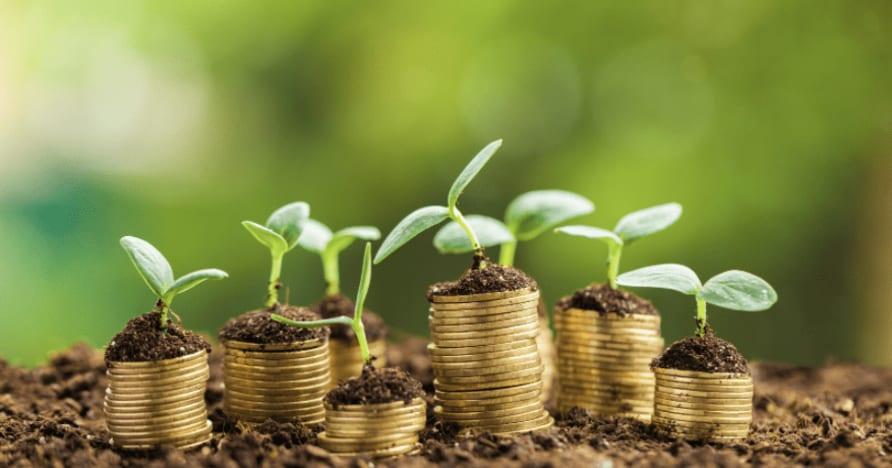 Мобилни казино бонуси - всичко, което трябва да знаете