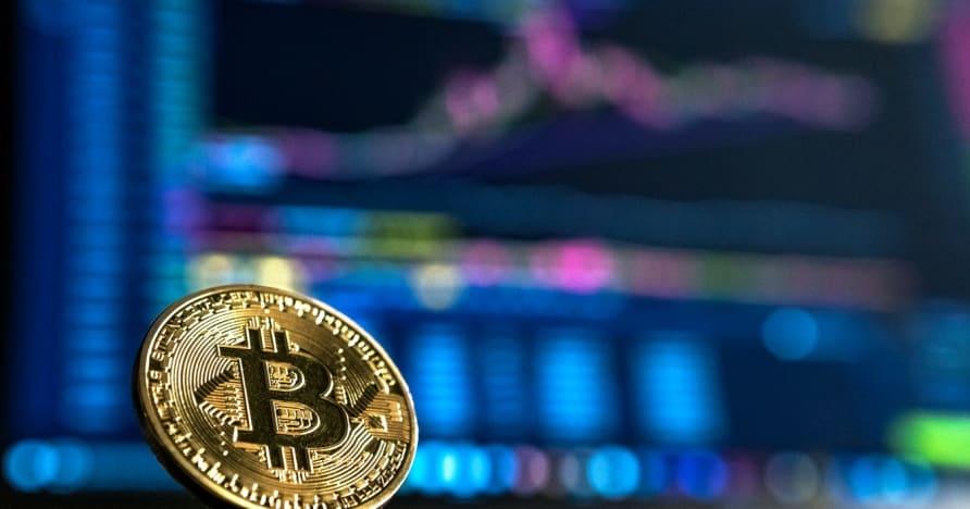 Ръководство за начинаещи за хазарт с криптовалути